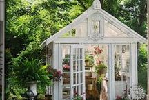 Conservatories, Greenhouses, Potting Sheds & Benches / by Deirdre Barnett