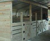 Farm DIY / Back Yard Farm / Back yard farming, homestead, farm DIY, chickens, goats, cows, gardens