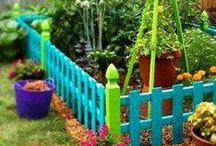 Garden Veggies / backyard veggie gardening