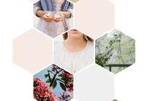 Design / Design inspiration for creative entrepreneurs and business owners / by Megan Powell - Brand Designer