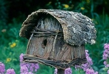 Birdhouses / by Pat Marvin