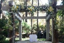 Ceremony Sites / A perfect ceremony site is the backdrop to two very important words.  I DO! #exoticgreengarden