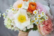 wedding / by Christina Hood