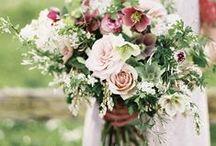floral / by Stefanie Miles