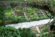 In the Garden / Pretty Garden Ideas