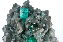 In the Quarry / a delightful collection of rocks and minerals