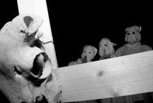 """El Altar del Holocausto TAF 2013 / Fotografías por Santiago Benito """"Hori"""" y Javier """"Mani"""" Queizan El Altar del Holocausto TresAcordesFest Sabado 22 de junio"""