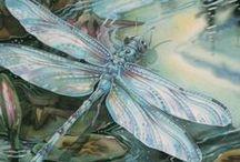 Dragonflies & Fairies / by Heidi Reagan