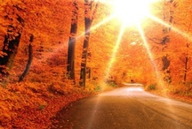 Fall Time....LOVE / by Heather