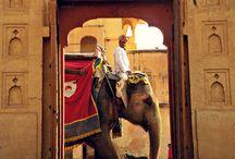 Enchanting India
