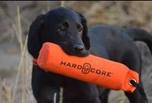 Hunting & Outdoor Dogs / A collection of fan-submitted hunting dogs! Share pictures of your outdoors pup with us on Facebook, Twitter and Instagram using #ShareTheThrill.