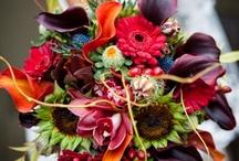 Wedding Ideas / by La Torretta Lake Resort & Spa