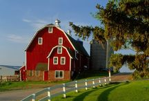 REd BaRN in THe COUntRy / by Maryann