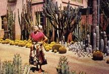 Down Mexico Way / by marichuski