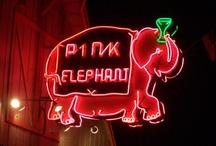 the neon lights / by marichuski