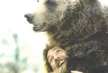 furry ♥ friends / cuddly animals