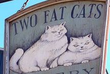 Fat Cats / Fat cats and what to do about them / by Kaye George