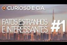#FEIcurioso