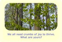 """sw 8: Joyful Union / Soulful Week 8: """"We all need crumbs of joy to thrive. What are yours?"""" ~ Marta Stemberger #SoulfulSparks http://soulfulsparks.hamoves.net/joyful-union-2/"""