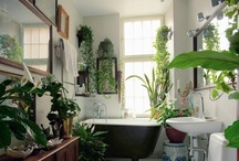 Favorite Places and Spaces / by Julie Quimby