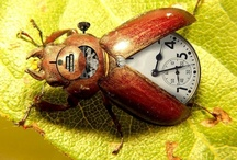 Tick Tock / by Carol Fraile