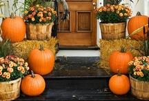 Fall / Fall ideas including Halloween & Thanksgiving