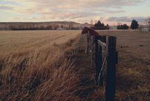 Country Stuff / by Cassidy Wisnom