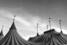 circus / by Danielle M