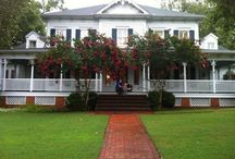 Project Plantation  / What we want in our new house. Fun ideas to update and decorate our new house. The McCracken Manor. Our very own Southern Plantation house.  / by Katie McCracken