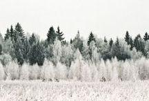 The Winter Kingdom