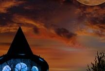 Enchanted / by Lisa Attarian