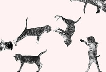 kitty themed