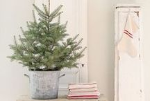 Holidays / Crafts and ideas for my classroom, gift-giving, and decorating our home / by Sara Teel