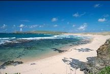 DAY TRIPS - TREVOSE, NORTH CORNWALL / Trevose and area, North Cornwall including Booby's Bay, Constantine Bay, Harlyn Bay, Mother Ivey's Bay, Porthcothan, Treyarnon.  About 47 miles (1 hr 20 mins drive) from us.