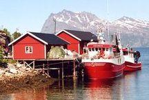 My Scandinavian Roots~