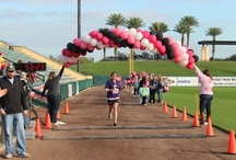 Polk Race for the Cure / Our 2nd Annual Polk Race for the Cure will be on January 19, 2013 at Tiger Town in Lakeland, FL. See you there!