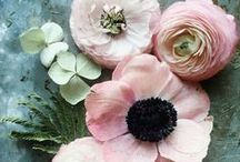 Floral Pattern Inspiration / Pretty florals that may become patterns.