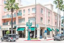 Palm Beach Style / Hotels, fashion and shopping in the Palm Beaches.
