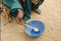 UNDP: Crisis in the Sahel
