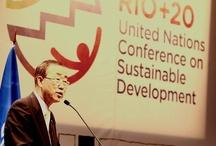 UNDP: The Road to Rio+20