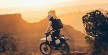 Mann fährt drauf ab. / Die schönsten Motorräder, Autos und heißen Fortbewegungsmittel für den Mann. Harley Davidson, Hot Rods, Cafe Racer, Biker Girls...