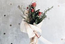 {Blooms}