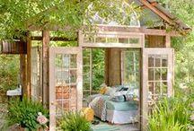 Gardens / by Haleigh Thrun