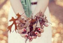 ✤ Herfst