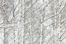 winter-y