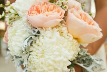 Bouquets / On this board you will find several beautiful wedding bouquets made from a wide variety of flowers. Use what you see here to design your own wedding day bouquet or give your florist an idea of what you want your bouquet to look like. / by The Personal Touch Wedding & Events