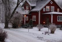 Christmas / by Patti Darwin