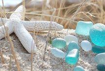 Sea Glass and Sea Shells