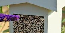 Bee Good / We love bees - find out how you can look after the busy bees in your garden!