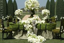 Green / by Maxit Flower Design
